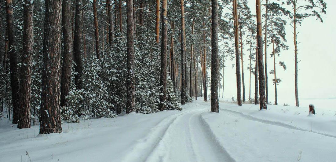 Где погулять в Санкт-Петербурге зимой фото